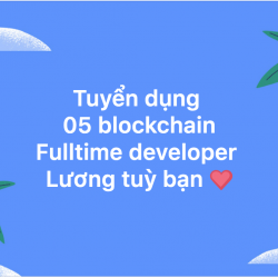 05 Blockchain Developers